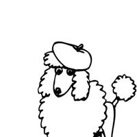 Poodle Design